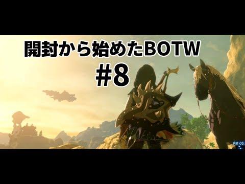 開封から始めたBOTW #8