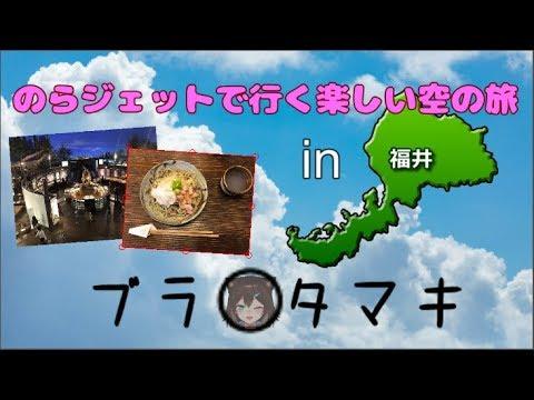 のらジェットで福井旅行の続き