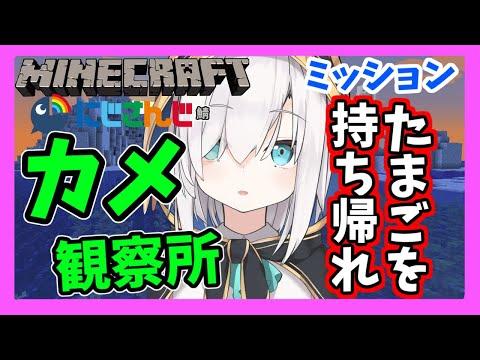 #16【Minecraft】カメの生態観察所【アルス・アルマル/にじさんじ】