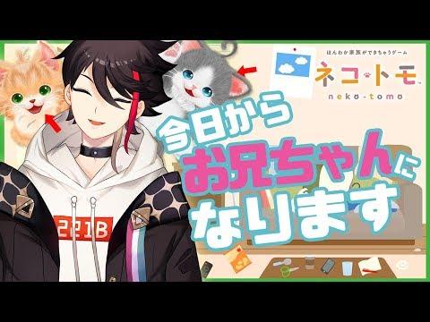 【ネコトモ】ネコたちの「お兄ちゃん」になれるゲーム【三枝明那 / にじさんじ】