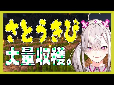 【マイクラ】さとうきび畑を作りながらおしゃべり【健屋花那/にじさんじ】