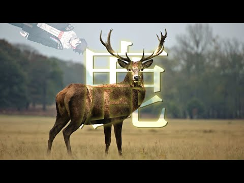 【DEEEER Simulator】鹿 (鹿) #鹿  【鹿】