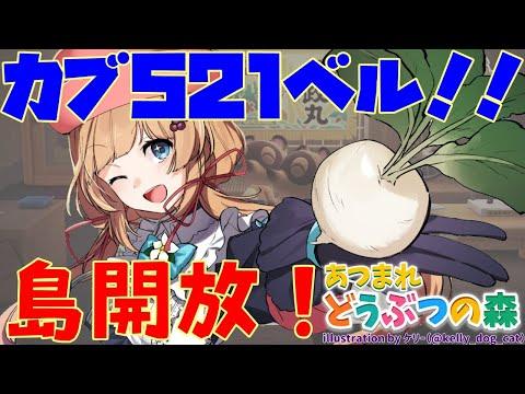 #4【#あつ森】カブ521ベル!島開放!【#エリーコニファー/#にじさんじ】#あつまれどうぶつの森