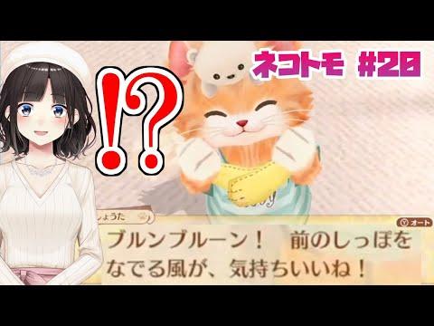 【ネコ・トモ #20】最終回まで秒読み!?