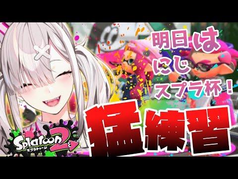 【スプラトゥーン2】ごちゃまぜメンバーで猛特訓!【健屋花那/にじさんじ】