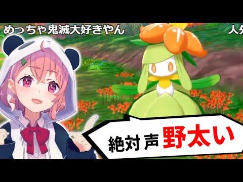 笹木咲のドレディーア【ポケモン剣盾/鎧の孤島】