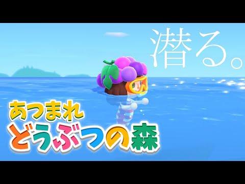 【あつまれどうぶつの森】ジョニーと潮干狩りとダイビング #12