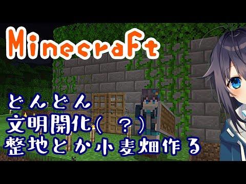 【Minecraft】寝る前に整地と小麦畑作りたい【にじさんじ/空星きらめ】