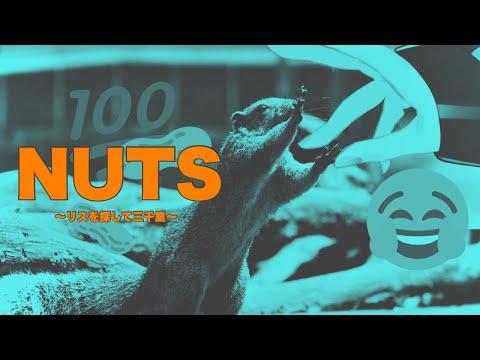 【NUTS】リスをおうわよ【メリッサ・キンレンカ/にじさんじ】