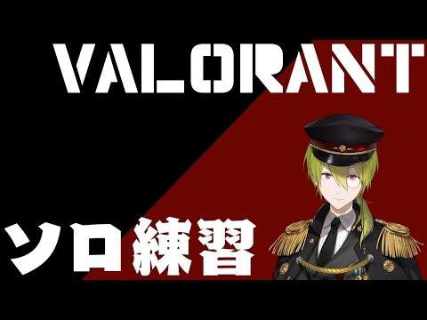 【VALORANT】最強目指してランク行きたいから頑張ろ!【渋谷ハジメ/にじさんじ】